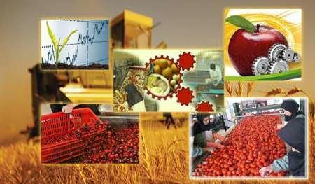 جلوگیری از خام فروشی محصولات کشاورزی راهی برای پیشرفت مالی
