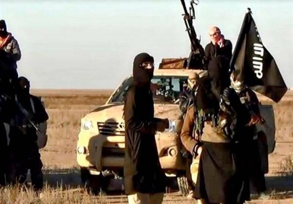انتقال شماری از داعشی ها از سوریه به عراق توسط آمریکا