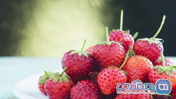 خواص شگفت انگیز توت فرنگی؛ از تنظیم فشار خون تا تقویت سیستم ایمنی بدن